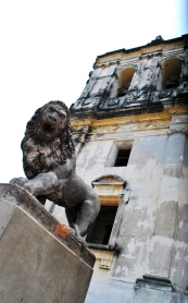 The lion outside the Cathedral